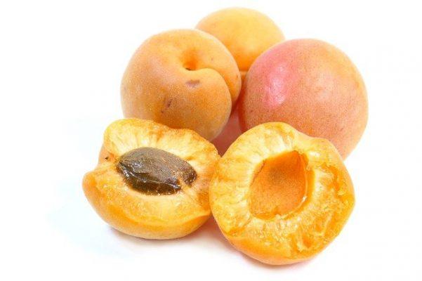 apricot oil natural organic creams